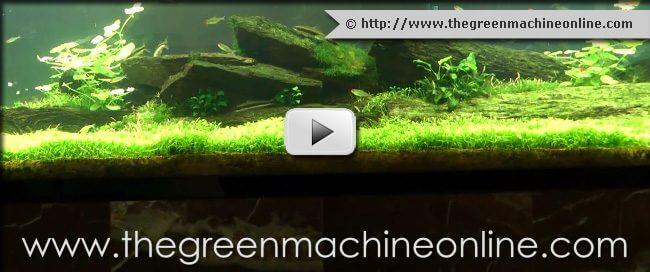 thumb-greenmachinevideo