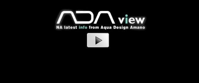 [ADAview] Nature Aquarium Party 2016 Distributor's Specials