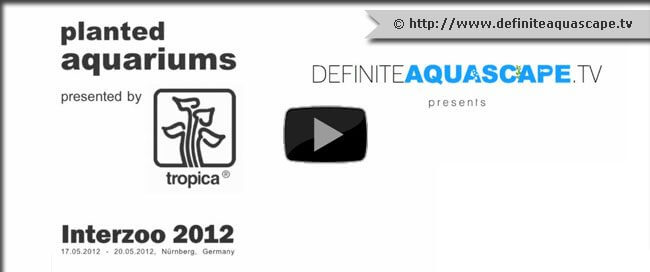 thumb-Tropica-planted-aquariums-at-InterZoo-2012