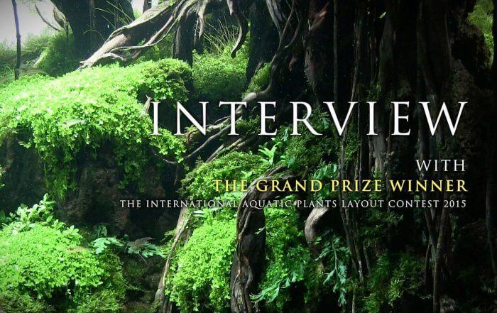 ada-interview-02112015