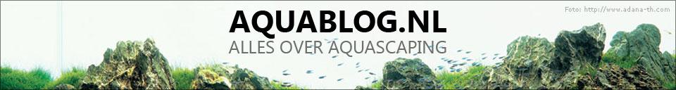 Aquablog.nl – Alles over aquascaping